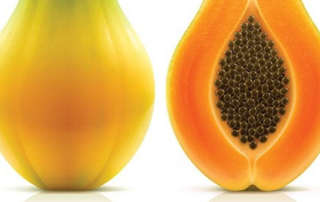 Papaya Linked to Salmonella Outbreak